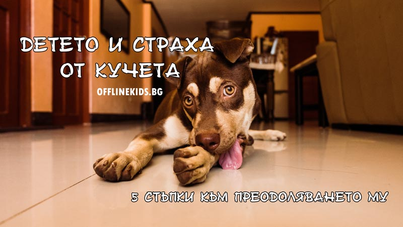 Детето и страха от кучета – 5 съвета за преодоляването му