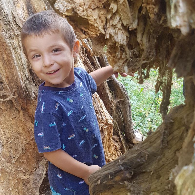 Яни се усмихва от дървото.